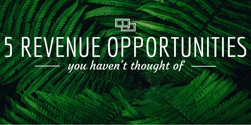 5 Revenue Opportunities Tour and Activity Operators Are Missing Out On